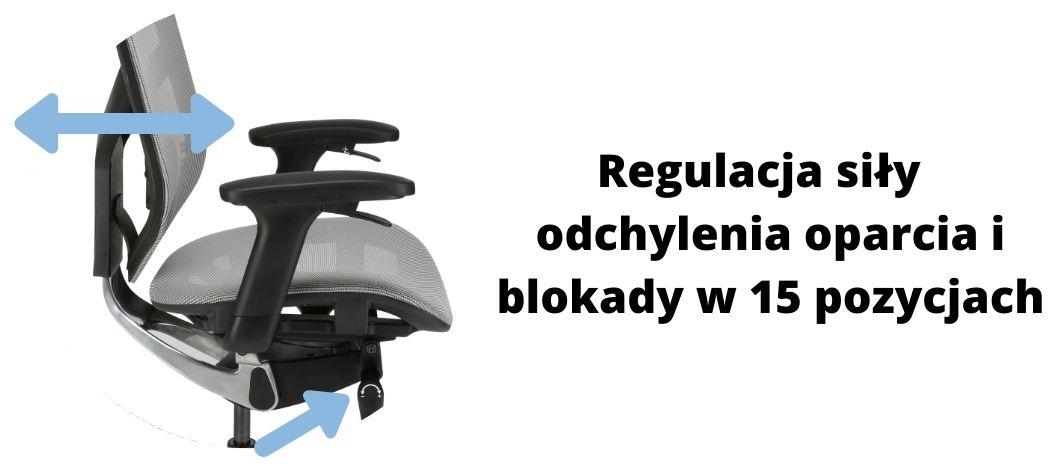Wygodny fotel ergonomiczny biurowy Zhuo Insight, regulacja odchylenia