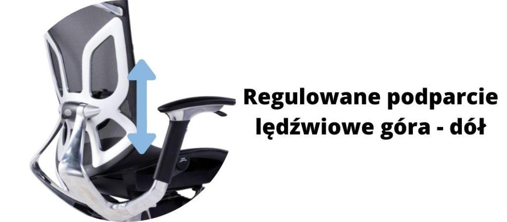 Fotel ergonomiczny Zhuo Challenger dla programisty, regulowane podparcie lędźwiowe
