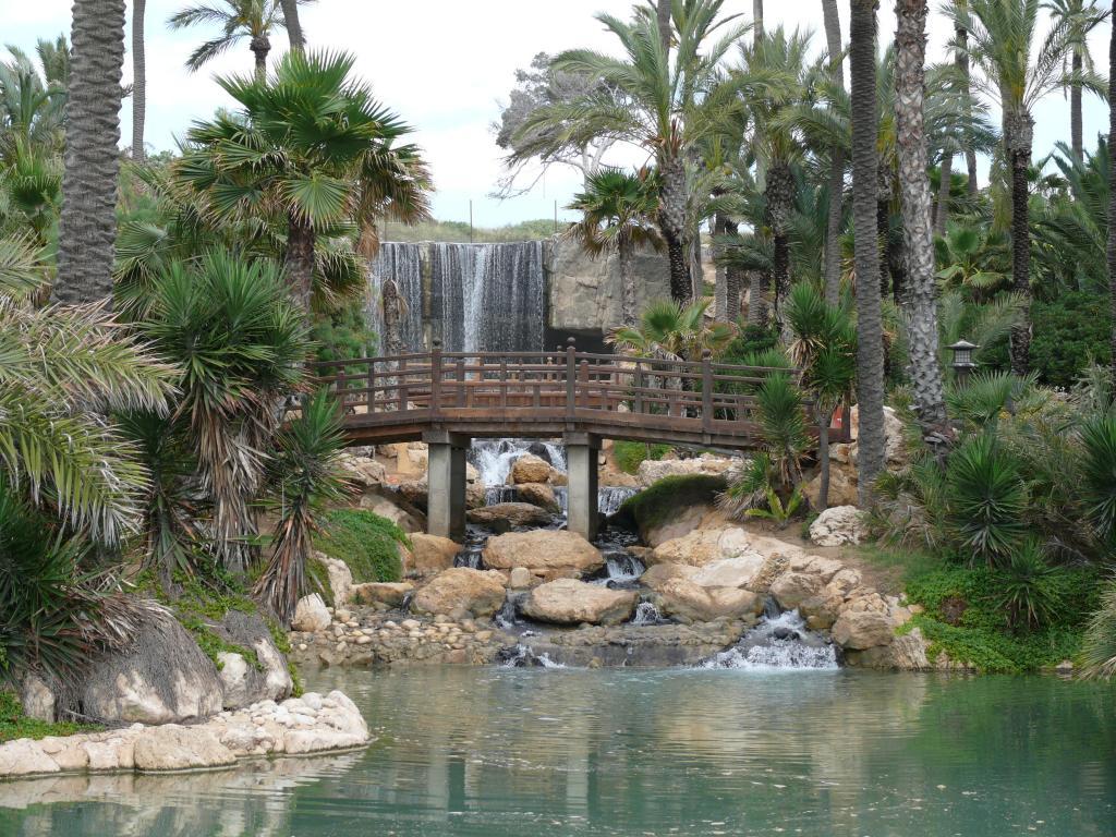 Co zwiedzić w Alicante - Parque el Palmeral