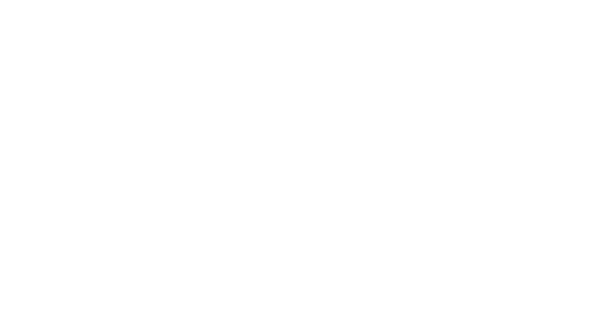 Polak Custom Guitars