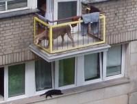 Ten uses for a Polish balcony | POLANDiAN