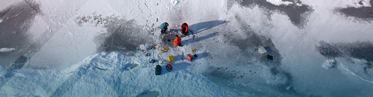 SIOC 219: Ice Sheet-Ocean Interactions