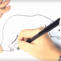 How to Draw a Polar Bear for Kids - Super Simple Steps, Images, Videos