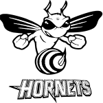 Welcome to Highland Hornets Youth Football & Cheer