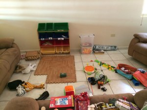Their toys have temporarily taken over the living room until we get organized