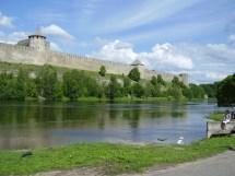 In Narva Pole & Clero
