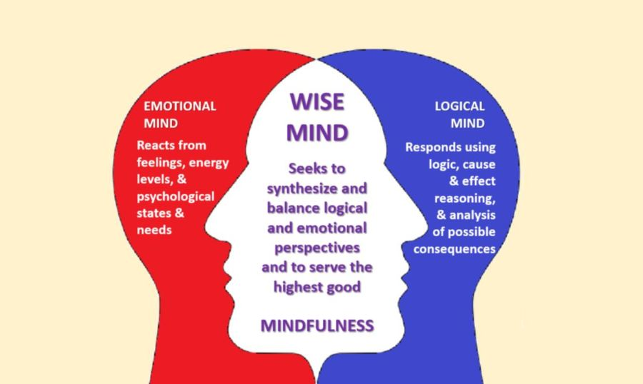 Empathy and Mindfulness in leadership (and life)