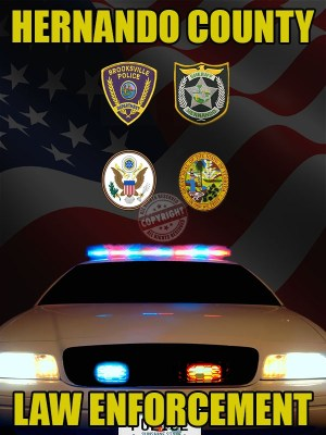Hernando County Florida Law Enforcement Poster