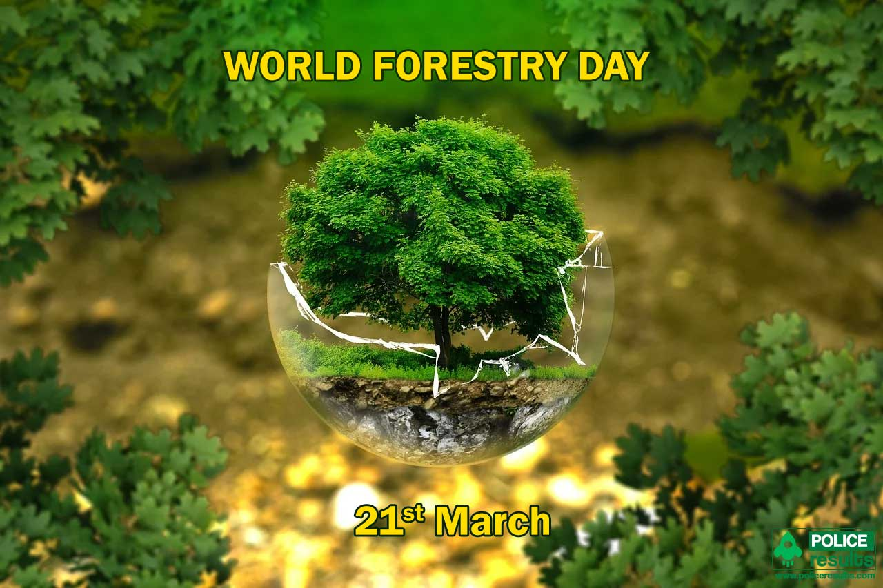 If you love nature as we do, please, check out these tree quotes. Logo World Forestry Day 2021 Theme Slogan Poster Quotes Images Messages
