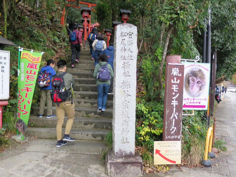 嵐山猴子樂園岩田山 Arashiyama Monkey Park Iwatayama