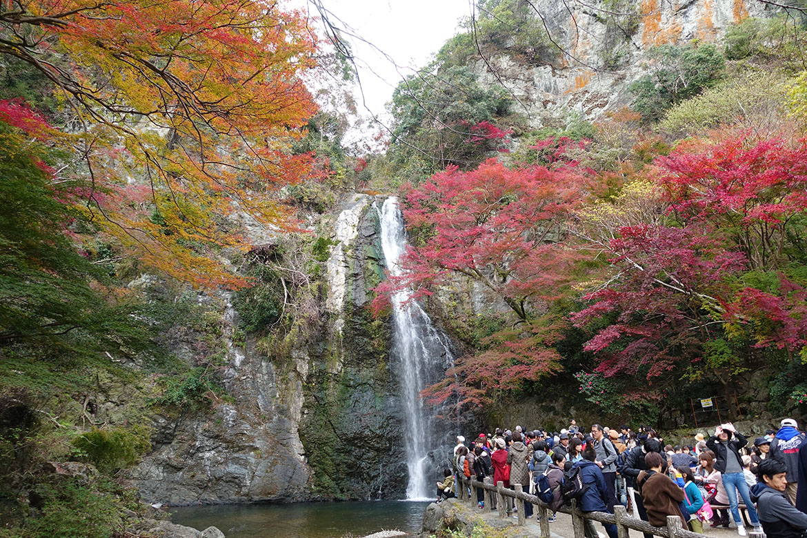 箕面瀑布 minoo waterfall