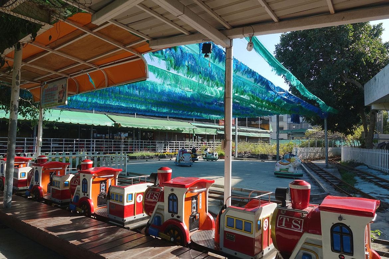 中社觀光花市 Zhongshe flower market taichung