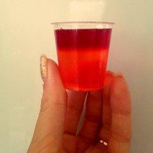 vodka-jelly-shots-polina-rocks