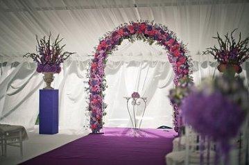 Арка фиолетовая