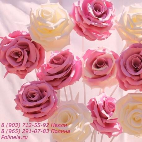 роза белая 1