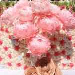 Ростовые пионы розовые на свадьбу