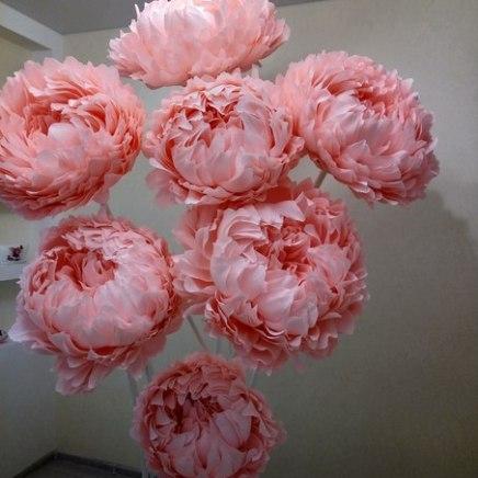 Большие цветы пионы пудрового цвета