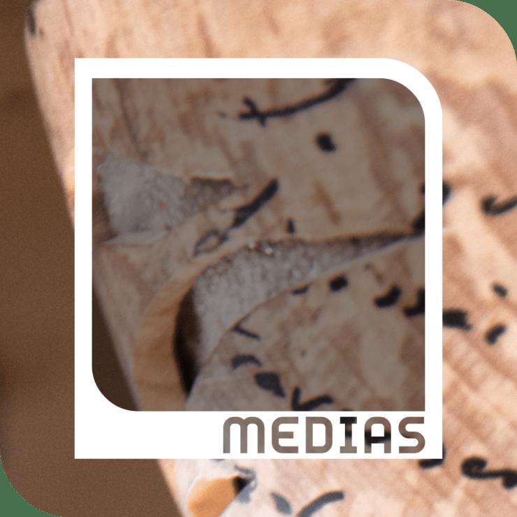 Médias-Polinno