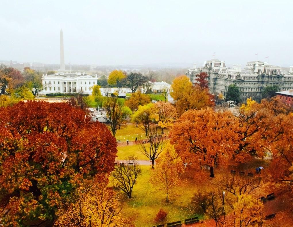 Fall Colors Lafayette Square