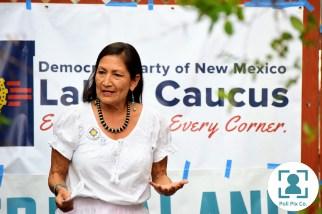 20180810 Deb Haaland & DPNM Labor Caucus 03