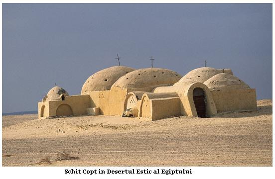 Coptii-6.jpg