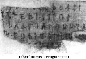 LibLinet-4