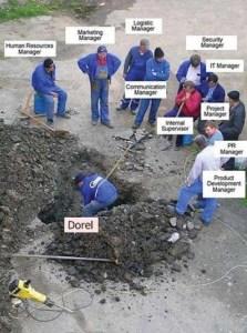 Dorel 2