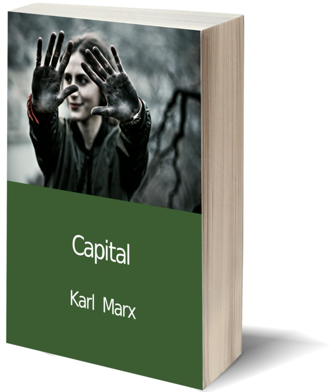 Thomas piketty capital review