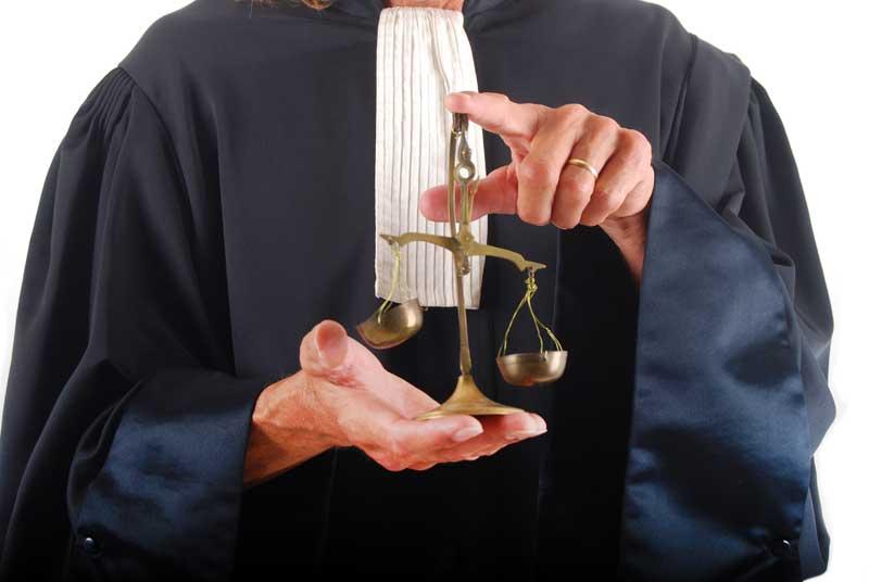 Utilitatea avocatilor in general