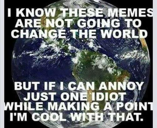 memes-wont-change-world-but-annoying-idiot-makes-it-worthwhile