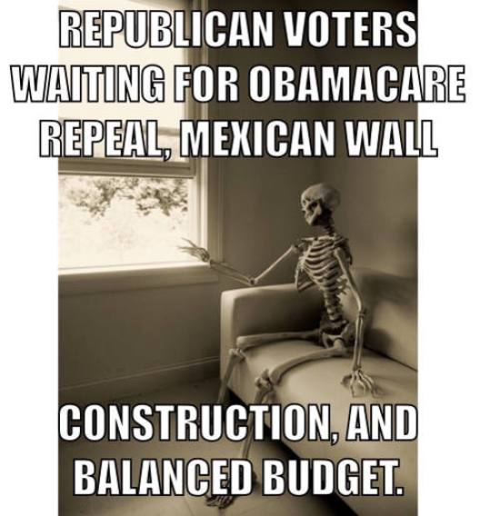 republican-voters-waiting-for-wall-obamacare-repeal-balanced-budget