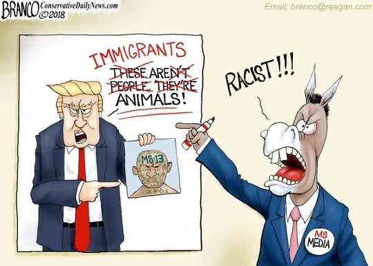 media-immigrants-animals-ms13-comment-trump