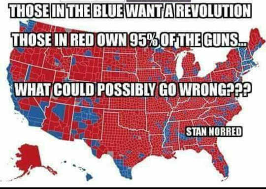 usa-blue-want-revolution-red-own-95-percent-guns