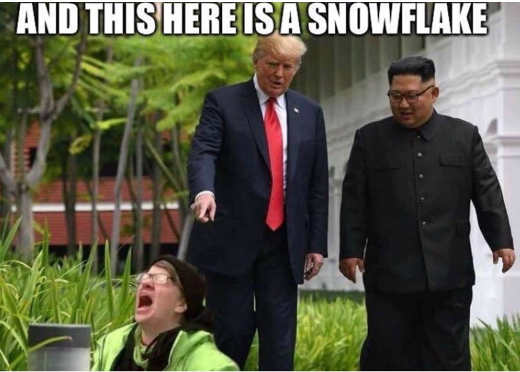 and-this-here-is-snowflake-trump-kim-jong-un