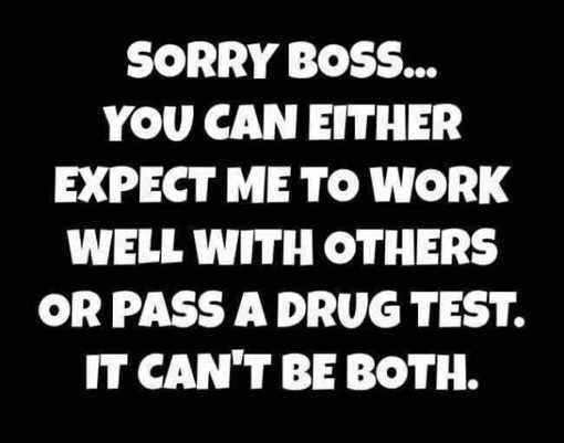 sorry-boss-can-pass-drug-test-or-be-nice-to-coworkers-not-both