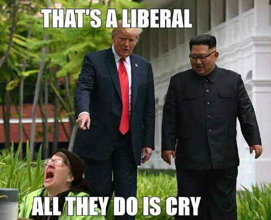 thats-a-liberal-all-they-do-is-cry-trump-kim-jung-un