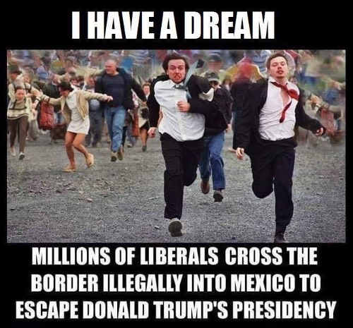 I-have-a-dream-millions-liberal-cross-border-illegally-escape-donald-trump