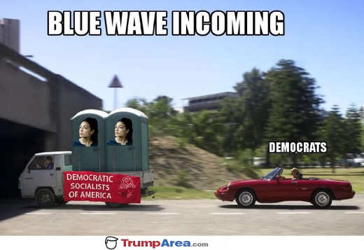 blue-wave-coming-outhouse-democratic-socialists