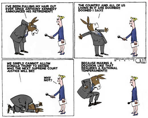 democrats-making-rational-decision-about-supreme-court-justice