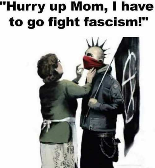 hurry-up-mom-have-to-go-fight-fascism antifa