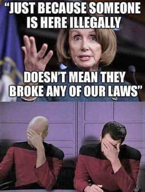 just-because-illegal-aliens-here-doesnt-mean-done-anything-illegal-nancy-pelosi