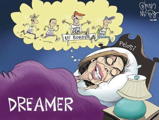 nancy-pelosi-dream-jumping-fence-to-vote-democrat