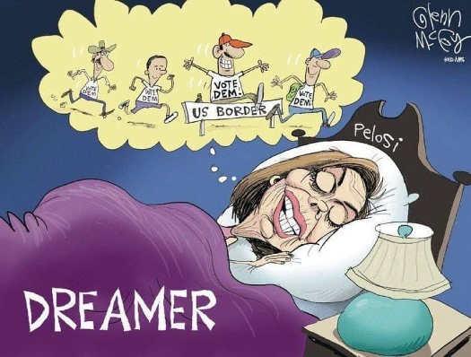 nancy-pelosi-dream-jumping-fence-to-vote-democrat