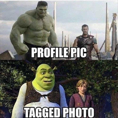 profile_pic-tagged-photo-hulk-thor-shrek