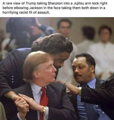 rare-view-of-trump-sharpton-jujitsu-reverend-jackson-take-down