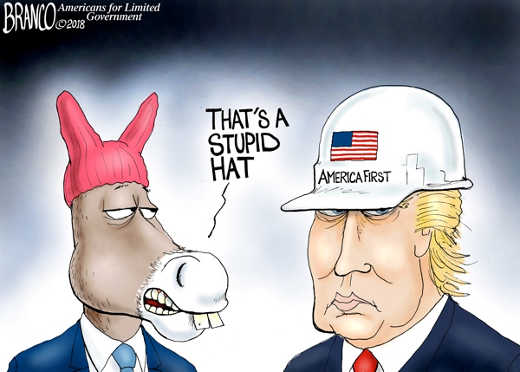 thats-a-stupid-hate-america-first-pussy-hat-on-democrat