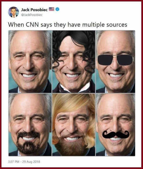 when-cnn-says-they-have-multiple-sources-lenny-davis-disguised