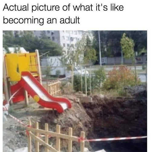 actual-picture-what-its-like-becoming-adult-slide-into-pit