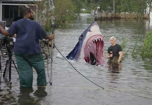 cnn-shark-hurricane-florence-water-anderson-cooper