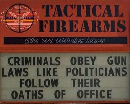 criminals-obey-gun-laws-like-politicians-follow-their-oath-of-office